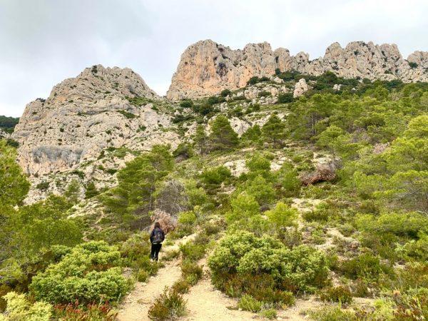 Cova del Pinar